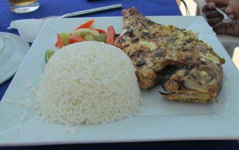 Snapper rice